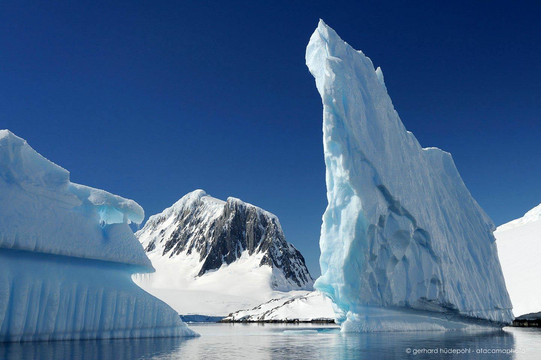 Antarctica Landscape And Wildlife Penguins Icebergs