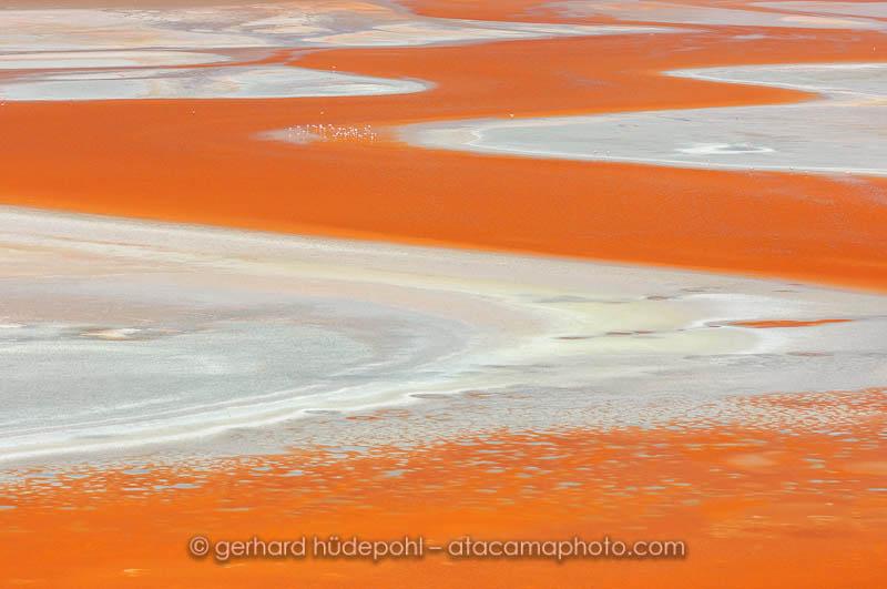 Abstract detail of Laguna Colorada, Bolivia