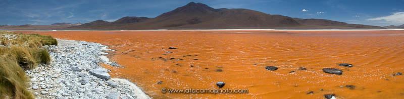 Laguna Colorada panorama, Bolivia, the orange color is produced by micro algae