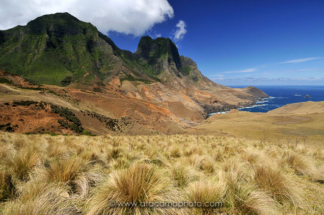 Tussock grass plains and mountains of Isla Robinson Crusoe with Cerro Yunkes