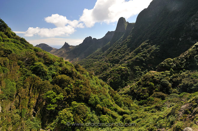 Dense vegetation and rugged mountains of Robinson Crusoe Island, Chile