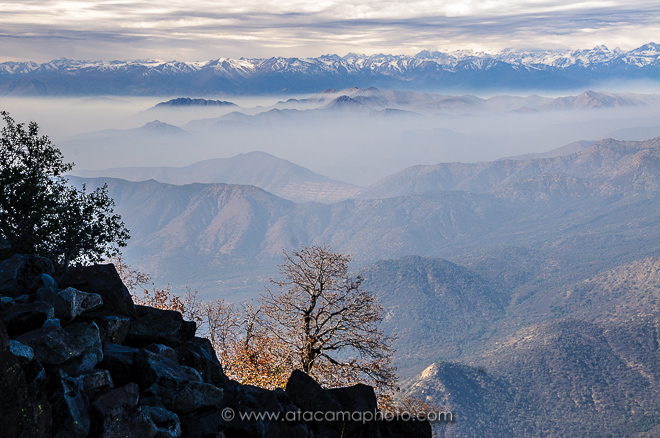View from the top of La Campana mountain towards the Andes. Valley filled with smog from Santiago de Chile