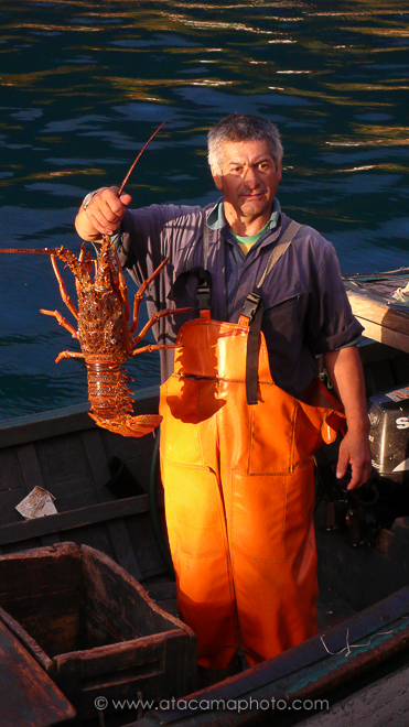 Fisherman with large lobster, Robinson Crusoe island