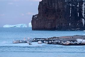 Cape Adare rock cliffs and Adelie penguin colony, McMurdo Sound Antarctica