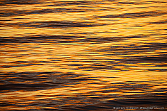 Abstract golden wave patterns on the ocean surface at sunset