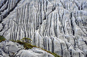 Limestone erosion caused by very high rainfall, Isla Madre de Dios, Patagonia Chile