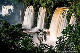 Cataratas de Iguazu, waterfalls in the jungle, Argentina