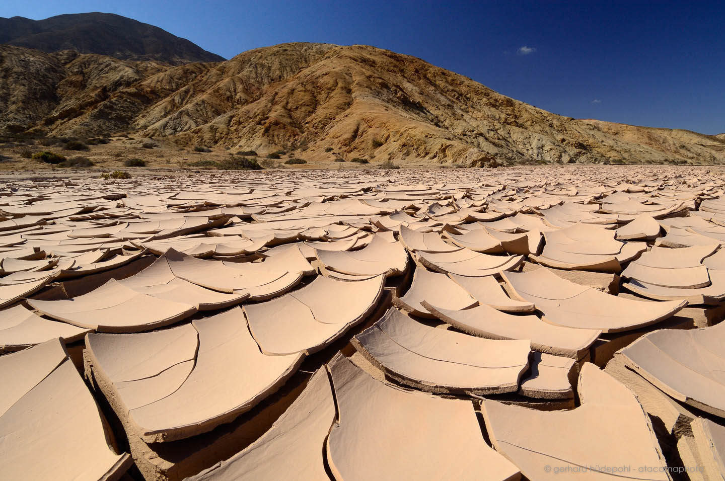 Atacama Desert landscape, volcanoes, lagoons and Altiplano of Chile Atacama Photo Mudcracks in a dry riverbed, Pan de Azucar National Park. Only about once every decade water runs here for a short period of time.