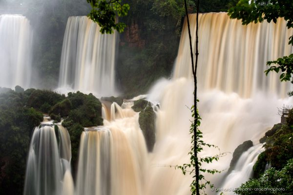 The Iguazu waterfalls are surrounded by dense jungle.